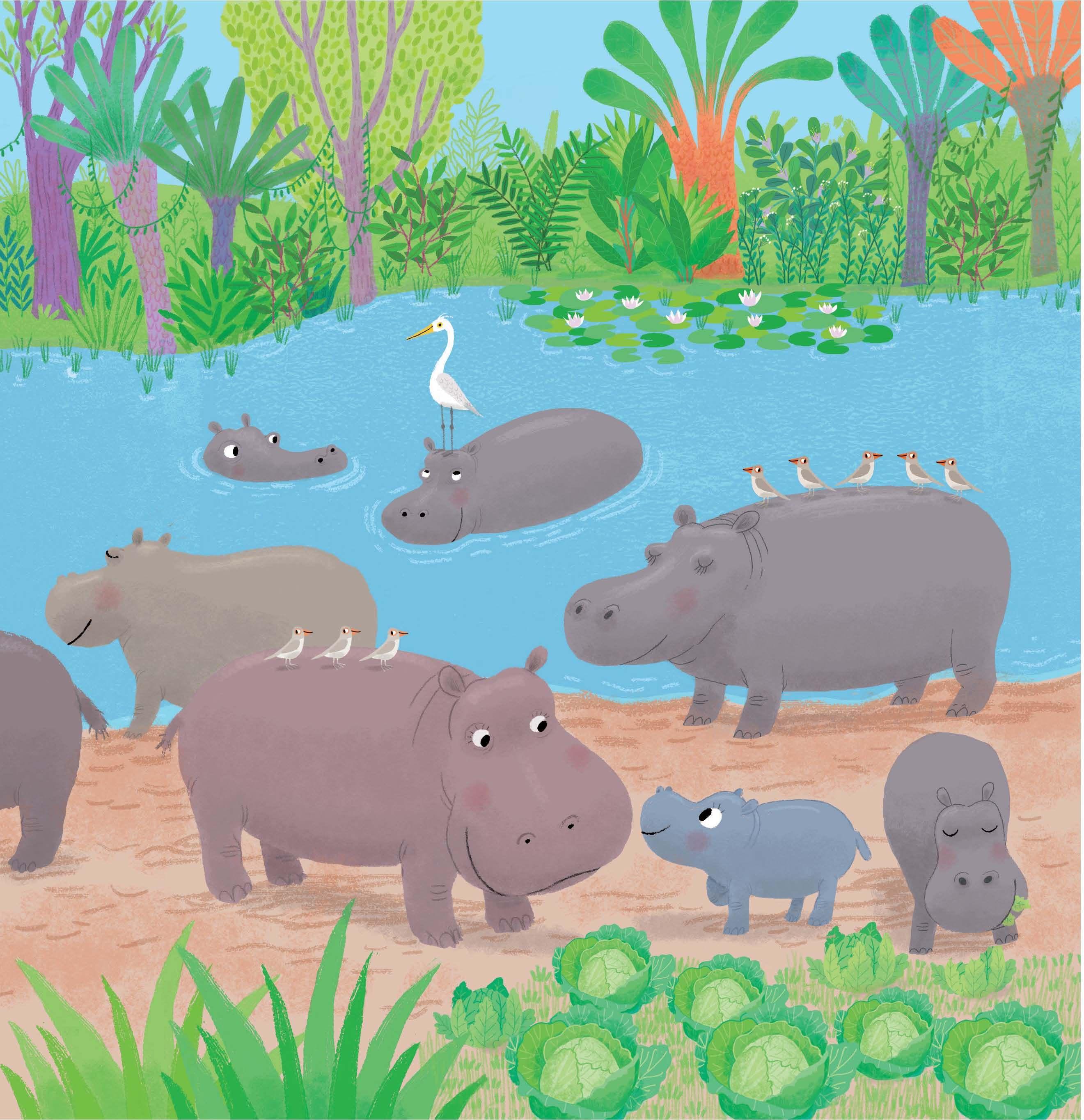 hipopotamo cuento