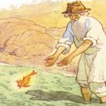 el pescador y su mujer cuento infantil