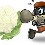 El ladron de coliflores cuento