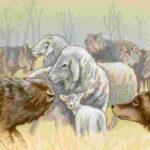 fabula esopo lobos y ovejas