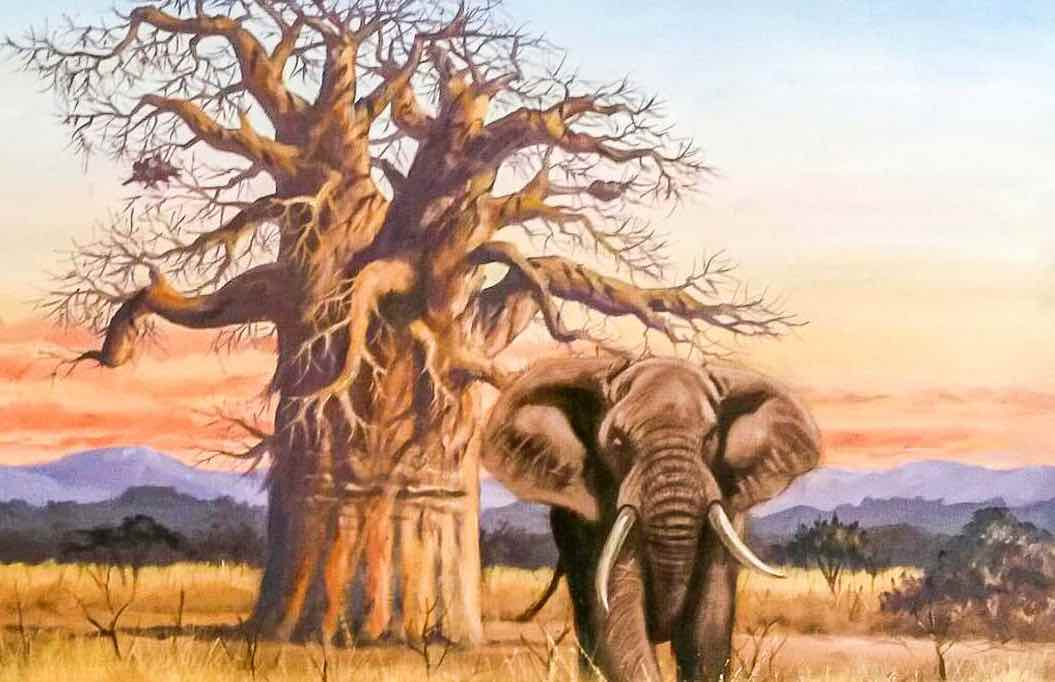 fabula africana